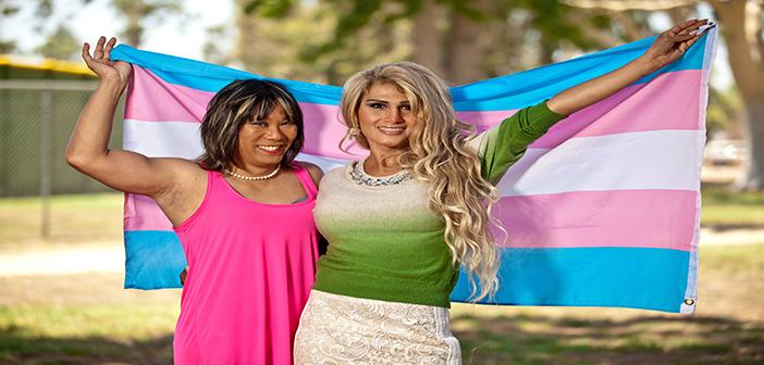 AP-Transgender&Transsexual