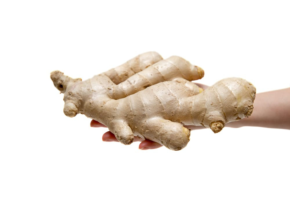 ginger root figging